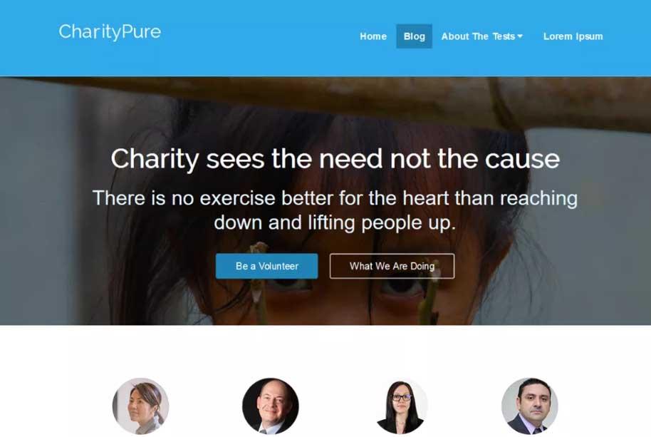 CharityPure