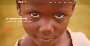 Free WordPress Charity Themes