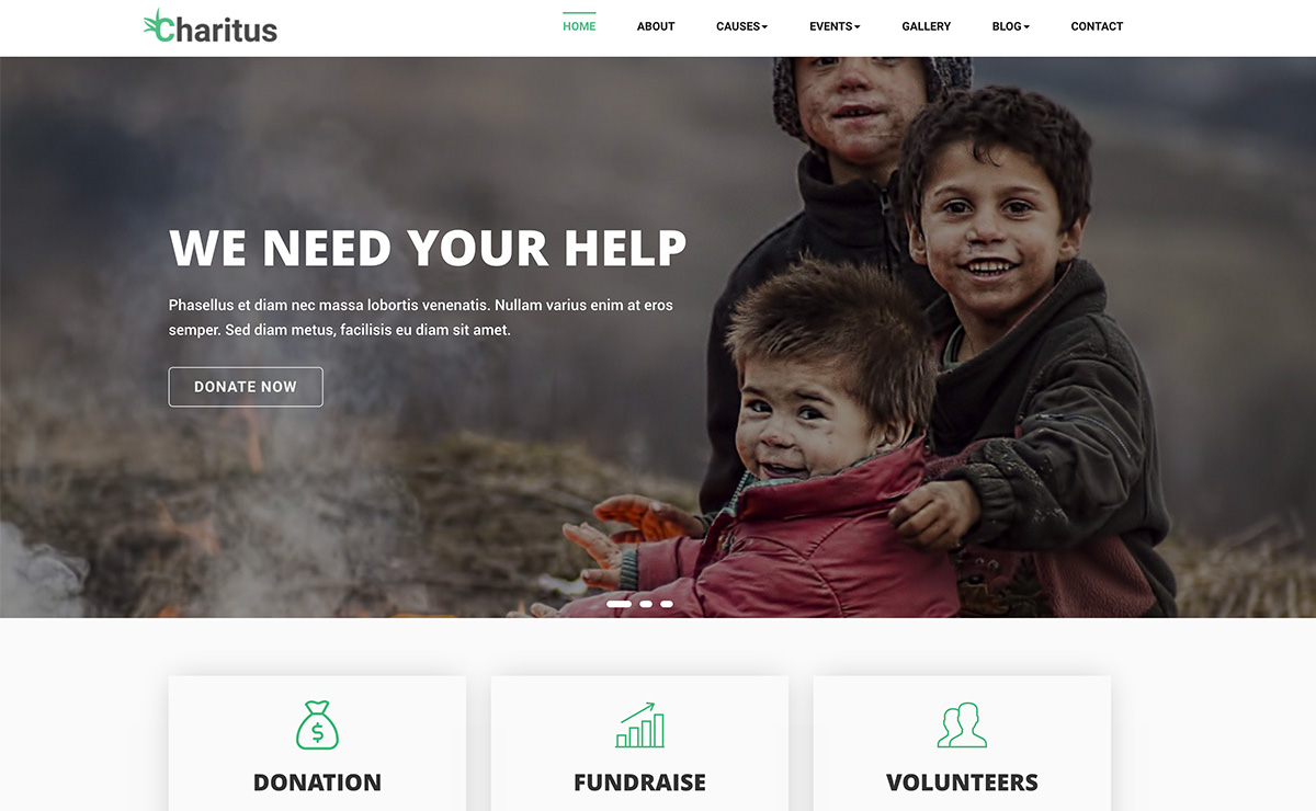 Non Profit Charity Bootstrap Template